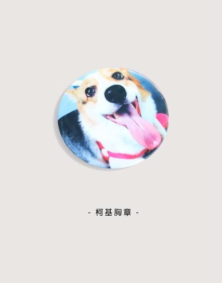 胸章   柯基犬