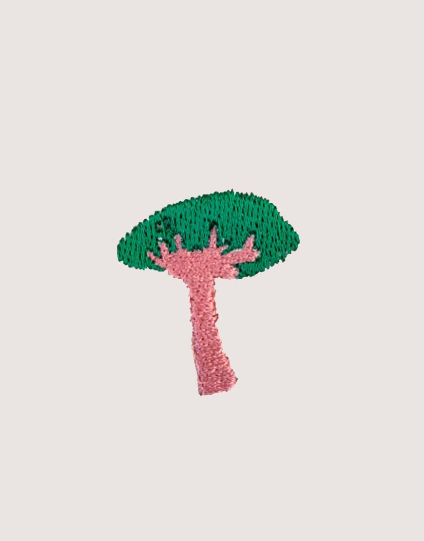 植物園 一號樹